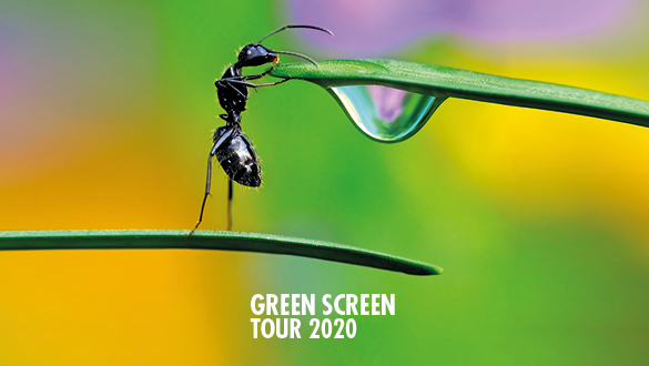 Green Screen Film Tour 2020
